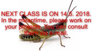 2018-Grasshopper-image-NEXT CLASS