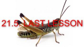 2018-Grasshopper-image-LAST LESSON