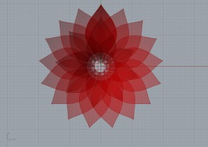 flower:succulent